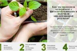 Фитосветильники: выращиваем рассаду и зелень всего за месяц
