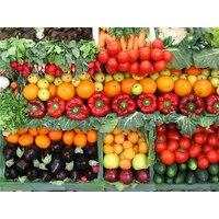 Рекомендации по выращиванию овощей