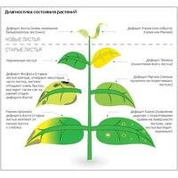 Дефицит питательных веществ при выращивании цветов-однолетников, какие признаки? как диагностировать?