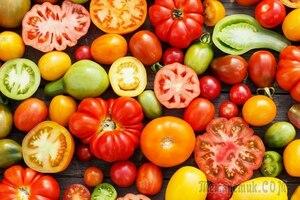 Какие бывают томаты: виды и классификация что такое Индетерминантные , Детерминантные сорта