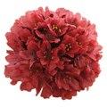 Семена цветов Армерии