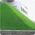 Для специального озеленения