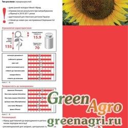 Семена Подсолнечник, ЛГ 5377, 1 п.е., LG
