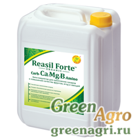 Reasil Forte Carb-Ca/Mg/B-Amino (Реасил Форте Карб-Ca/Mg/B-Амино)