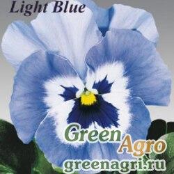 """Виола виттрока (Viola wittrockiana) """"Joker F2"""" (light blue) raw 1000 шт."""