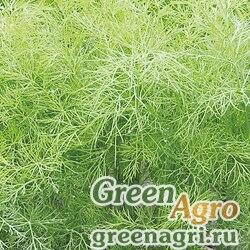 Грин Cливз | Green Sleeves Пряно-вкусовые культуры