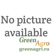 Семена Проминанс F1 | Prominence Морковь