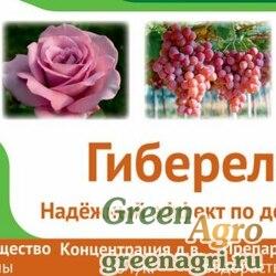Гиберелон, ВРП (40 г/кг гибберелиновых веществ)