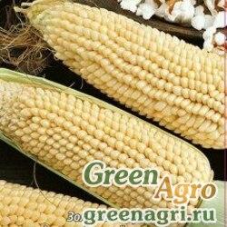 Кукуруза Белое облако  (упак-50 гр.)