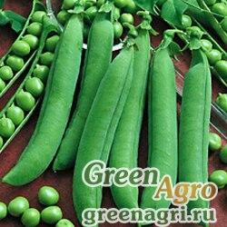 Горох овощной Фуга кг(Весовые семена)