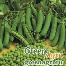 Горох овощной Сенатор кг(Весовые семена)