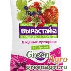 Удобрение Вырастайка Ягодные,кустарники 1кг Био-Мастер  х25/700