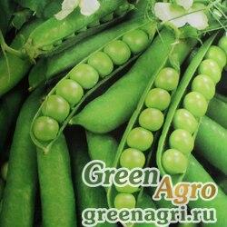Горох овощной Прима  (упак-50 гр.)