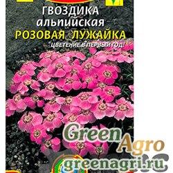 Гвоздика альпийская Розовая лужайка Плазма Ц