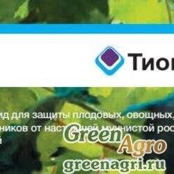 ТИОВИТ ДЖЕТ, ВДГ 75 гр