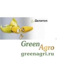Семена Кукуруза, Делитоп, 1 п.е., Syngenta