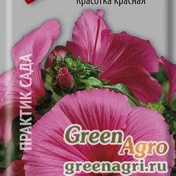 Лаватера Красотка красная  (упак-50 гр.)