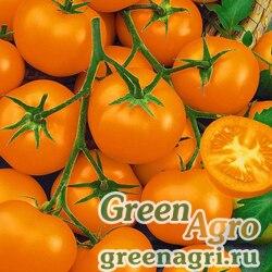 """Томат (Lycopersicon esculentum) """"Funnyplums"""" (orange) raw 1000 шт."""