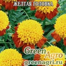 Бархатцы отклоненные махровые Желтая головка  (упак-50 гр.)