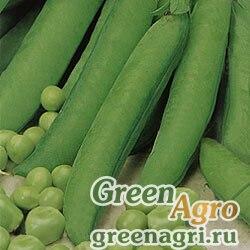 Горох овощной Алтайский изумруд(продается на вес)