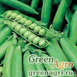 Горох овощной Иловецкий(продается на вес)