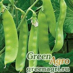 Горох овощной Орегон Шуга(продается на вес)