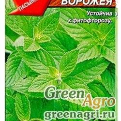 Мята Ворожея овощная Аэлита Ц