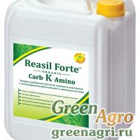 Reasil Forte Carb-K-Amino (Реасил Форте Карб-К-Амино)