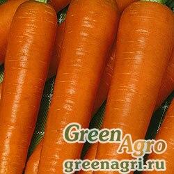 Морковь Витаминная 6 (упак-50 гр.)