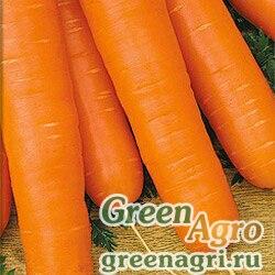 Морковь Нантская 4 (упак-50 гр.)