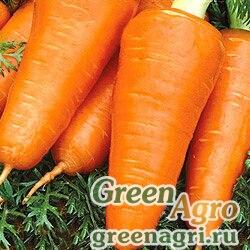 Морковь Курода Шантанэ (упак-50 гр.)