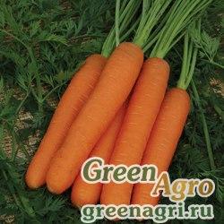Морковь Нанте (упак-50 гр.)