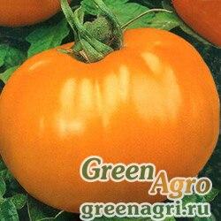 Томат Апельсин (упак-50 гр.)