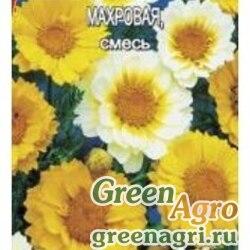Хризантема Увенчанная махр. смесь Аэлита Ц