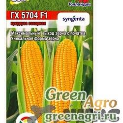Кукуруза ГХ 5704 6шт Сиб сад Цх10