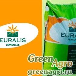 Семена Кукуруза, Инагуа (2015 г.), 1 п.е., Euralis