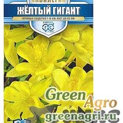 Аквилегия Желтый гигант Гавриш Ц