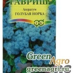 Агератум Голубая норка (Сад ароматов)Гавриш Ц