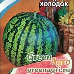 Арбуз Холодок ,1 гр