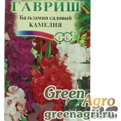 Бальзамин Камелия садовый Гавриш Ц