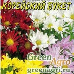 Хризантема Корейский букет махровая Цвет.Сад Ц