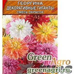 Георгина Декоративные гиганты см. 0,3г Аэлита Ц