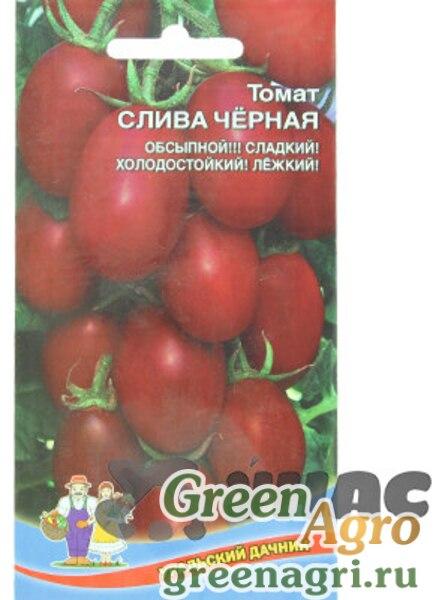 нанести томат слива золотая отзывы фото красоту привлекательность