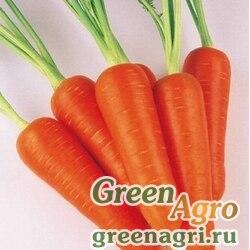 Абако F1 Морковь 1 млн.шт. Фр.2,0 <