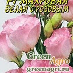 Эустома Махровая Белая с розовым Цвет Сад Цх10