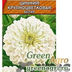 Циния Крупноцветковая белая Аэлита Ц