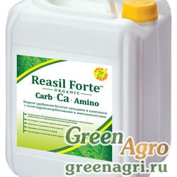 Reasil Forte Carb-Ca-Amino (Реасил Форте Карб-Ca-Амино)