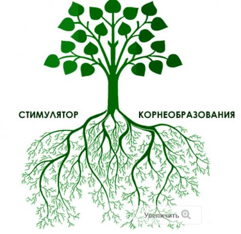 Корневин стимулятор роста корней